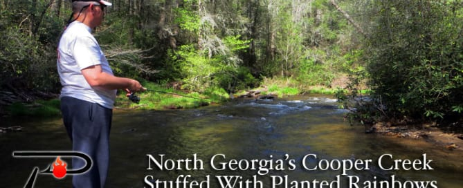 Georgias-Cooper-Creek-blog