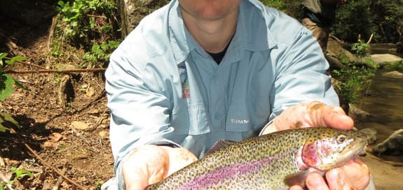 North-Georgia-Trout-Blog