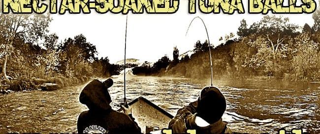 Theel-Salmon-blog