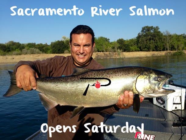 Sacramento river salmon season opens saturday pautzke for Best bait for salmon fishing in the river