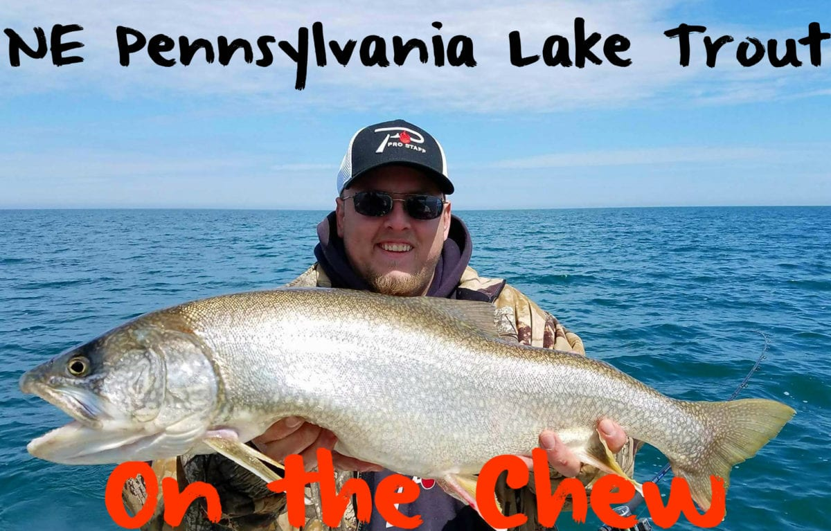 Walleye fishing in erie pa all the best fish in 2018 for Best trout fishing in pa