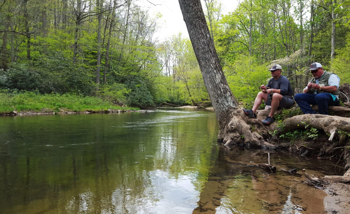North carolina s davidson river getting heavy trout plants for Davidson river fly fishing