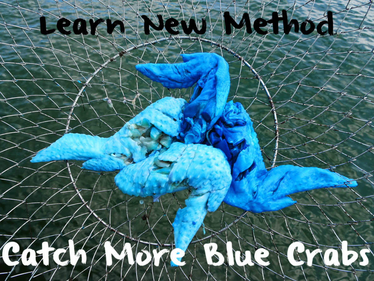 how to catch mew in blue