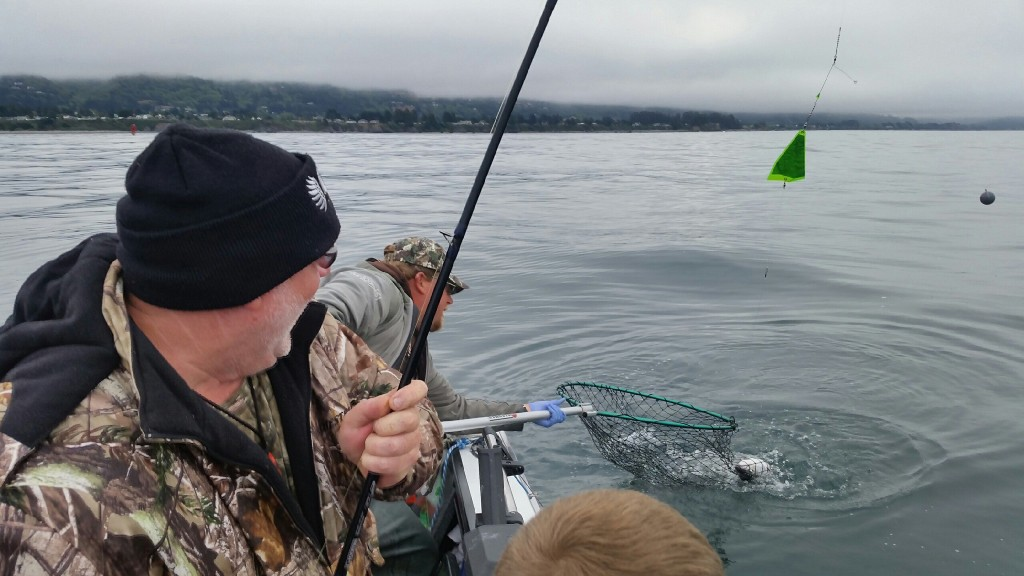 Four hot bait trolling rigs for ocean salmon fishing for Salmon fishing tackle setup