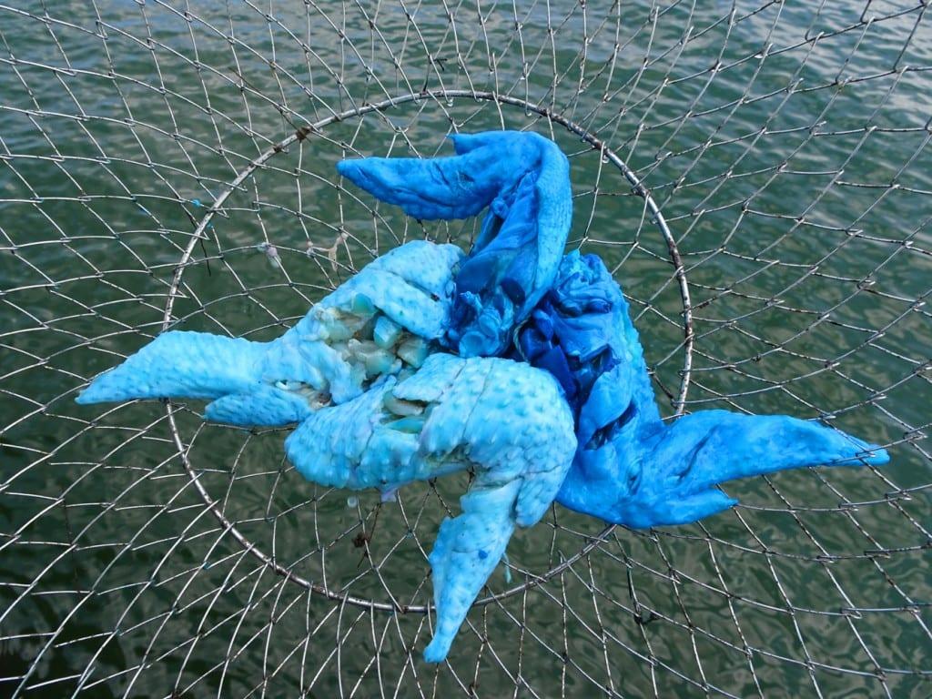Night Crabbing Long Island