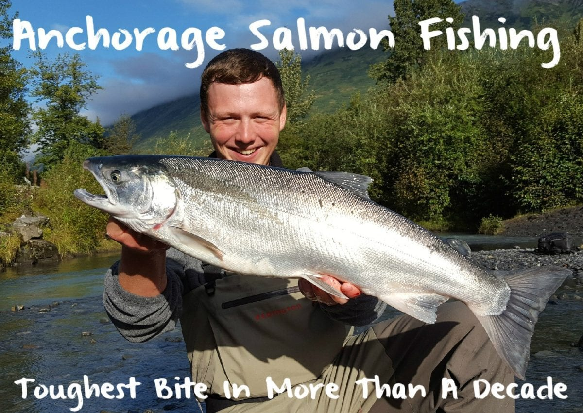 Anchorage salmon fishing toughest in more than a decade for Salmon fishing anchorage