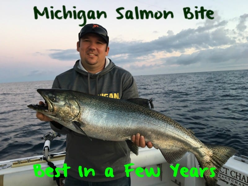 Michigan salmon bite best in a few years pautzke bait co for Best bait for salmon fishing in the river