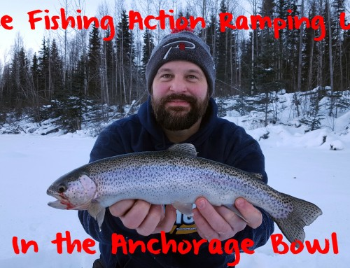 Ice Fishing Action Ramping Up in the Anchorage Bowl