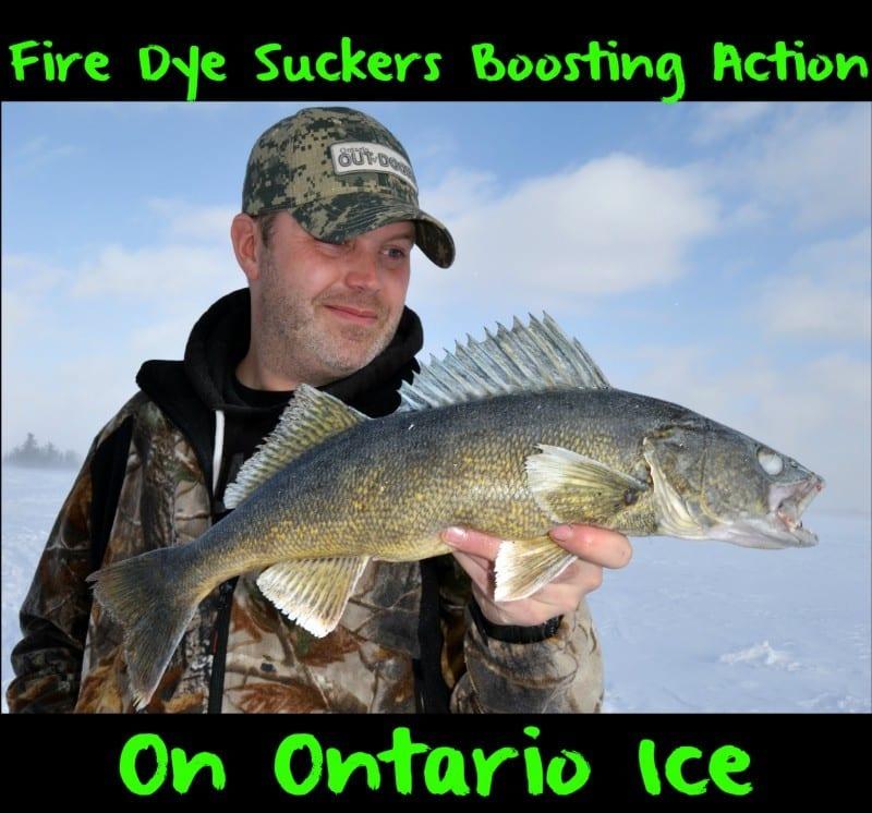 OntarioFireDyeIce