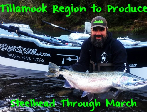 Tillamook Region to Produce Steelhead Through March