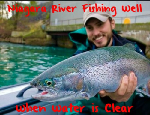 Niagara River Fishing Well – When Water is Clear
