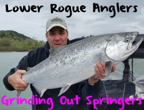 Lower Rogue Anglers Grinding Out Springers