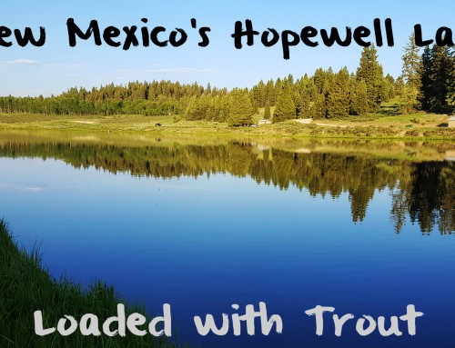 New Mexico's Hopewell Lake Loaded with Trout