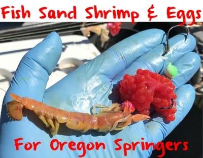sandshrimpeggslead