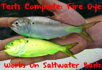 firedyesaltwaterbaits