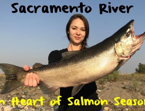 Sacramento River in Heart of Salmon Season