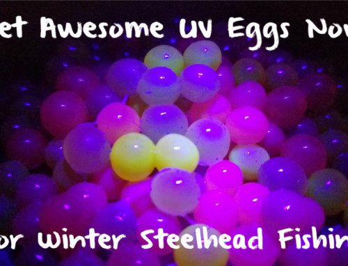 Get Awesome UV Eggs Now For Winter Steelhead Fishing