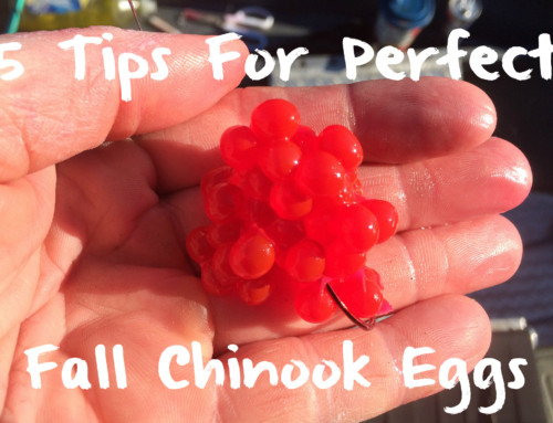 5 Tips for Perfect Fall Chinook Eggs