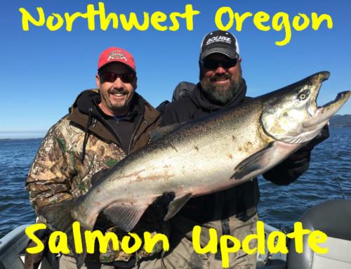 Northwest Oregon Salmon Update