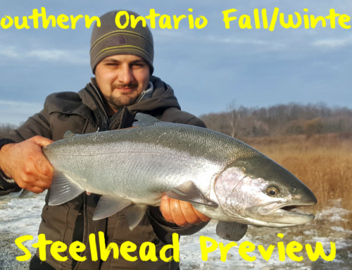 The Southern Ontario Fall/Winter Steelhead Preview