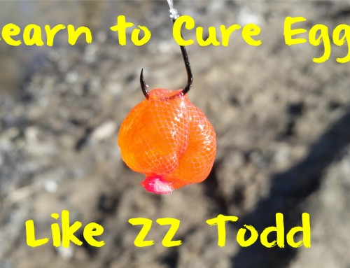 Learn to Cure Eggs Like ZZ Todd