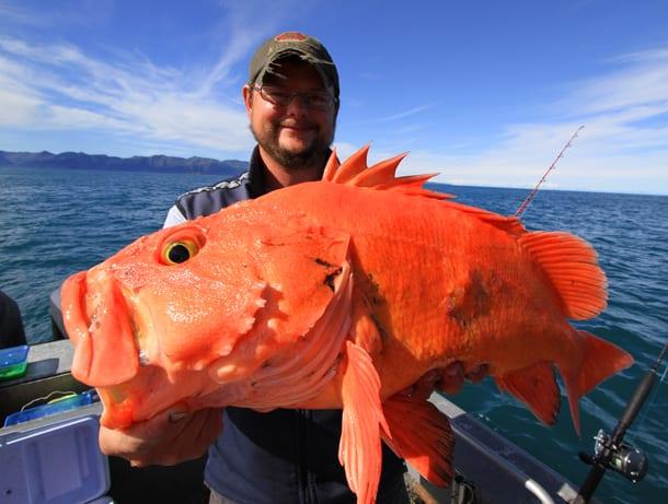 valdezfishingblog7