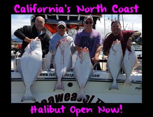 California's North Coast Halibut Open Now!