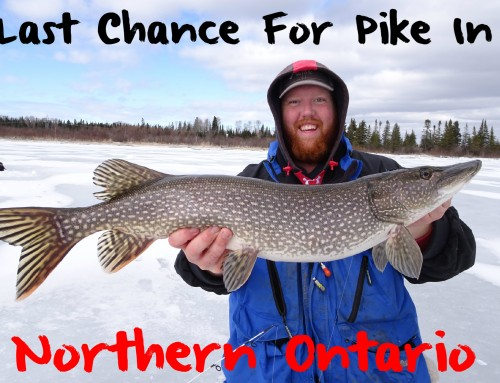 Last Chance for Pike in Northern Ontario